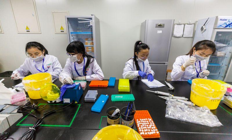 niñas ciencia