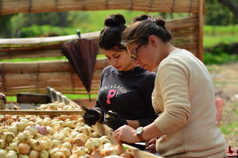 mujeres emprendedoras Colombia
